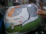 Nyanko-sensei pillow